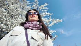 Lächelnde tragende Sonnenbrille der jungen Frau des niedrigen Winkels, die das warme Wetter des Frühlinges geht in Kirschblüte stock video footage