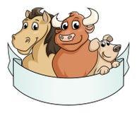 Lächelnde Vieh lizenzfreie stockfotos