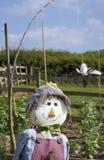 Lächelnde Vogelscheuche Lizenzfreies Stockfoto