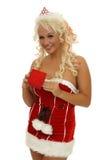 Lächelnde Weihnachtsfrau, die ein Geschenk gibt Stockfoto