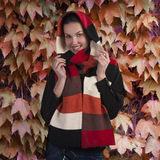 Lächelnder Brunette im Herbstschal Stockbilder