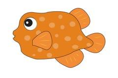 Lächelnder Goldfisch lokalisiert auf Weiß Stockbilder