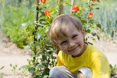 Lächelnder Junge Stockfotografie