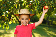 Lächelnder Junge mit Apfel Stockfoto