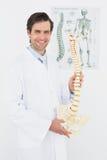 Lächelnder männlicher Doktor, der skeleton Modell im Büro hält Stockbilder