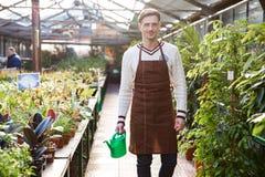 Lächelnder Manngärtner, der Gießkanne in der Orangerie steht und hält Stockfoto
