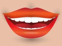Lächelnder Mund einer Frau Lizenzfreie Stockfotografie