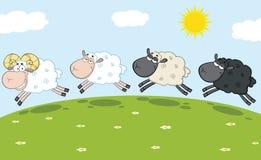 Lächelnder Ram Sheep Leading Three Sheep Lizenzfreie Stockbilder