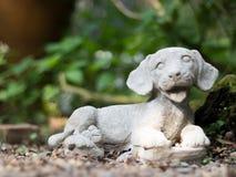 Lächelnder Steinhund Stockbilder