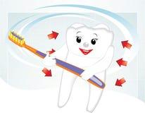 Lächelnder Zahn mit Zahnbürste. Karikatur Stockfotos