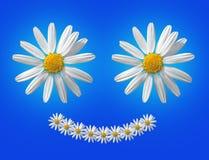 Lächelndes Gänseblümchen Lizenzfreie Stockfotos