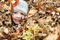 Lächelndes Jungengesicht in den Blättern stockfotografie