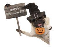 Lächelndes Pughündchen, das Holzschild mit glücklichem Halloween hält und Hexenhut und -kürbis trägt Stockbild