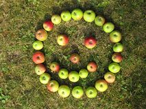 Lächelngesicht gemacht mit grünen roten Äpfeln im Herbst stockfotografie