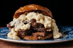 Läcker bringasmörgås med Mac och ost Royaltyfri Fotografi