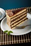 Läcker cake Fotografering för Bildbyråer