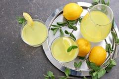 Läcker citronjuice i exponeringsglas och kanna Royaltyfri Foto