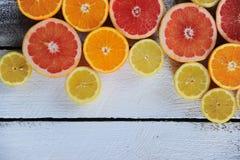 Läcker citrus fotografering för bildbyråer