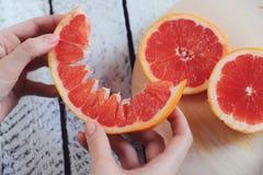 Läcker citrus royaltyfri bild