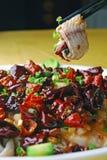 läcker fiskmat för kokt porslin Royaltyfri Bild
