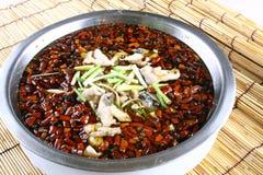 läcker fiskmat för kokt porslin Royaltyfri Foto
