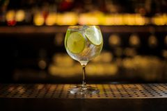 Läcker Gin Tonic coctail som dekoreras med limefruktskivor arkivfoton