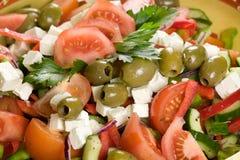 läcker grekisk sallad Royaltyfri Fotografi