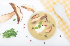 Läcker hemlagad kräm- soppa med lösa champinjoner och örter Arkivbilder