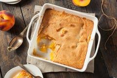Läcker hemlagad persikaskomakare Royaltyfri Foto