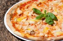 Läcker italiensk pizza ska tillfredsställa din hunger royaltyfria bilder