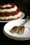 Läcker kaka med en vaniljsås och ett nytt hallon Royaltyfria Bilder