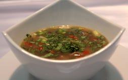 Läcker Kazakhstani soppa Arkivfoto