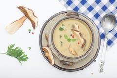 Läcker krämig champinjonsoppa med örter Fotografering för Bildbyråer