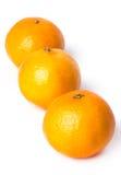 Läcker mandarin Royaltyfria Bilder