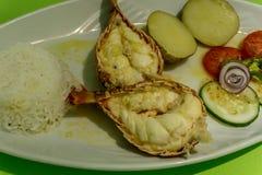 Läcker nicaraguansk mat fotografering för bildbyråer