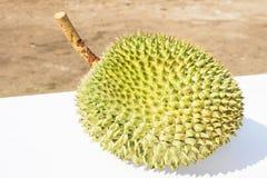 Läcker ny durian Royaltyfri Fotografi