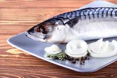 Läcker ny havsfisk på träbakgrund Sund mat, bantar eller matlagningbegreppet Fotografering för Bildbyråer