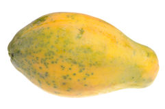 läcker papaya Royaltyfria Bilder