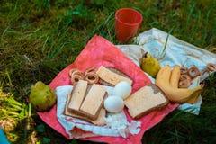 Läcker picknick på gräset under aktionen Royaltyfri Bild