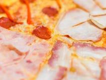 Läcker pizza med olika typer av korvar Royaltyfria Bilder
