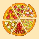 läcker pizza Sex sorter Fotografering för Bildbyråer