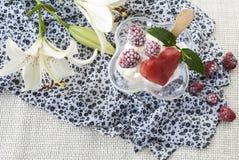 Läcker söt efterrätt, glass med hallon Royaltyfri Fotografi