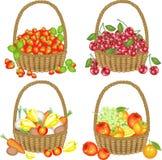 Läcker samling Fyra färdiga korgar med jordgubbar, körsbär, grönsaker, frukter En ?verfl?dande sk?rdvektor stock illustrationer