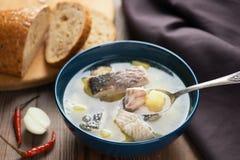 Läcker soppa med den vita fisken och potatisar royaltyfria foton