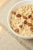 Läcker sund frukostfrilägebakgrund Oatmeal med russin arkivbilder