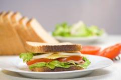 läcker sund smörgås Royaltyfri Fotografi
