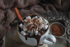 Läcker varm choklad med marshmallower, muttrar och kanel på ett silvermagasin och en tappningtorkduk, selektiv fokus Arkivfoto