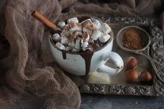 Läcker varm choklad med marshmallower, muttrar och kanel på ett silvermagasin och en tappningtorkduk, selektiv fokus Fotografering för Bildbyråer
