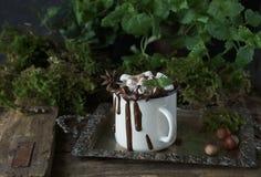 Läcker varm choklad med marshmallower och muttrar på en träbakgrund på ett tappningmagasin, selektiv fokus Arkivbild