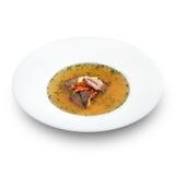 Läcker varm gallersoppa med grillade kött och grönsaker Arkivfoton